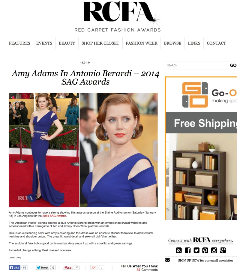 amy adams sag copy